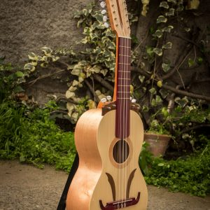 Guitarron Chileno Modelo 02