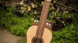 Guitarrón Chileno - Modelo Pircano 06