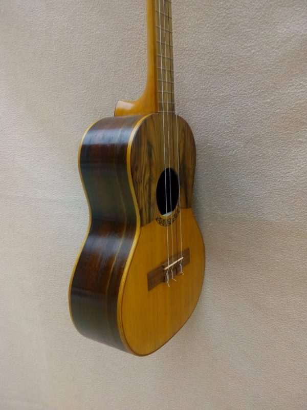 Cuatro Venezolano de Luthier - Modelo 02 - de 17 trastes