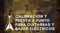 CURSO DE CALIBRACION ONLINE