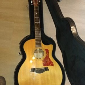 Guitarra Taylor 12 Cuerdas Limited Edition 454ce-L2 - Usada impecable