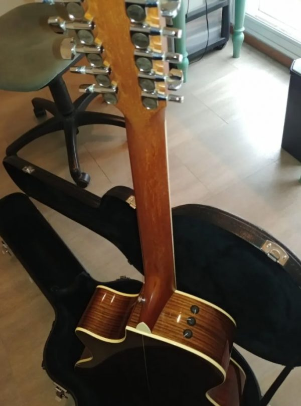 Guitarra Taylor 12 Cuerdas Limited Edition 454ce-L2 - Usada impecable