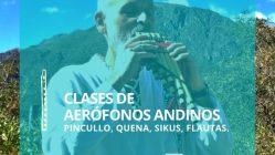 Clases de aerófonos andinos: pincullo, quena, sikus, flautas