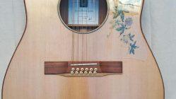 "Guitarra acústica 12 cuerdas modelo ""La Passionaria"" de Luthier"